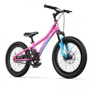 Велосипед детский RoyalBaby Chipmunk Explorer 20″ розовый